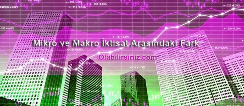 mikro ve Makro ekonomi
